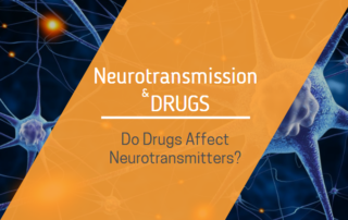 neurotransmission